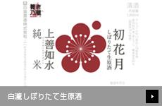 【店舗限定】 白瀧しぼりたて生原酒 第四弾 初花月(純米酒)