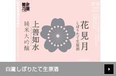 【店舗限定】 白瀧しぼりたて生原酒 今期最後!  花見月 純米大吟醸