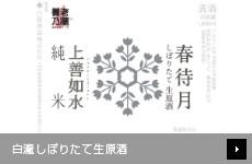 【店舗限定】 白瀧しぼりたて生原酒 第二弾 春待月(純米酒)